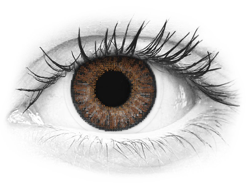 TopVue Color - Brown - dioptrické denné (10šošoviek) - TopVue Color - Brown - dioptrické denné (10šošoviek)