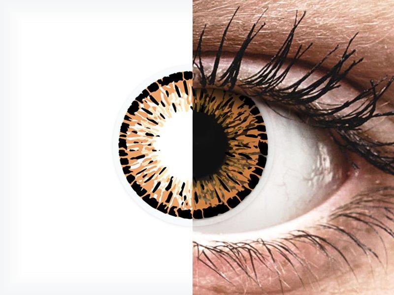 ColourVUE Elegance Brown - nedioptrické (2šošovky) - ColourVUE Elegance Brown - nedioptrické (2šošovky)
