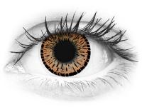 ColourVUE Elegance Brown - nedioptrické (2šošovky)