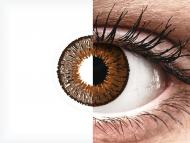 Expressions Colors Brown - nedioptrické (1 šošovka)