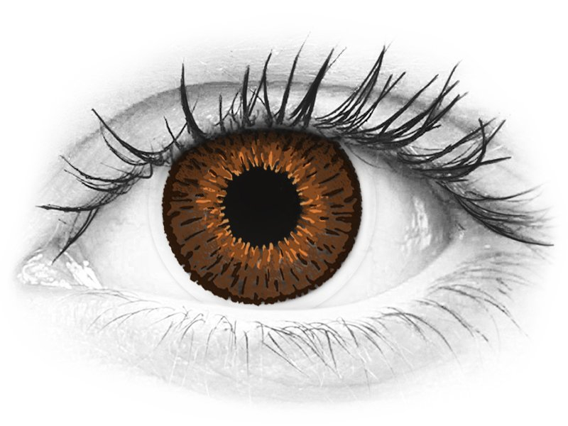 Expressions Colors Brown - dioptrické (1 šošovka) - Expressions Colors Brown - dioptrické (1 šošovka)